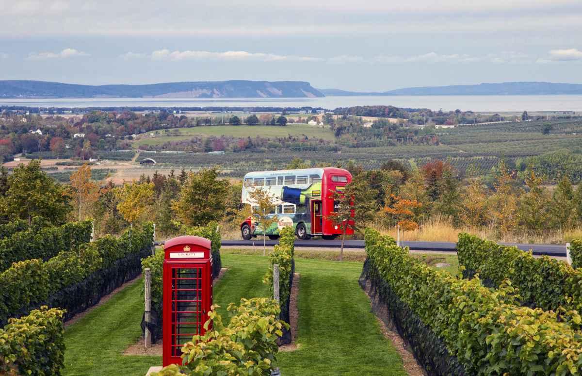 Nova Scotia Magic Winery Bus